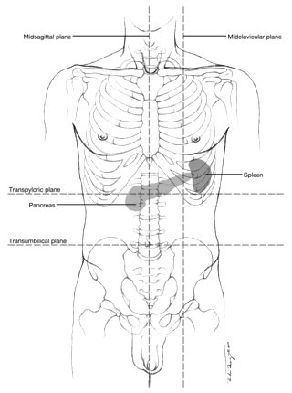 Anatomy Pancreas Location in addition Map Of Lymph Node Locations furthermore Basic Chest Diagram as well Hand Medical Diagram further Location Of Kidneys In Body. on schematic for pain chart